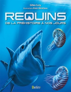 requinscunybeneteau