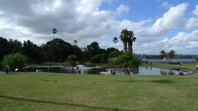 Main Pond im Botanic Garden, im Hintergrund Farm Cove.