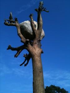 Giuseppe Penone: Idee di Pietra (Ideas of Stone), bronze and stone, 2004/2010