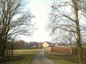 Fulda-Aue