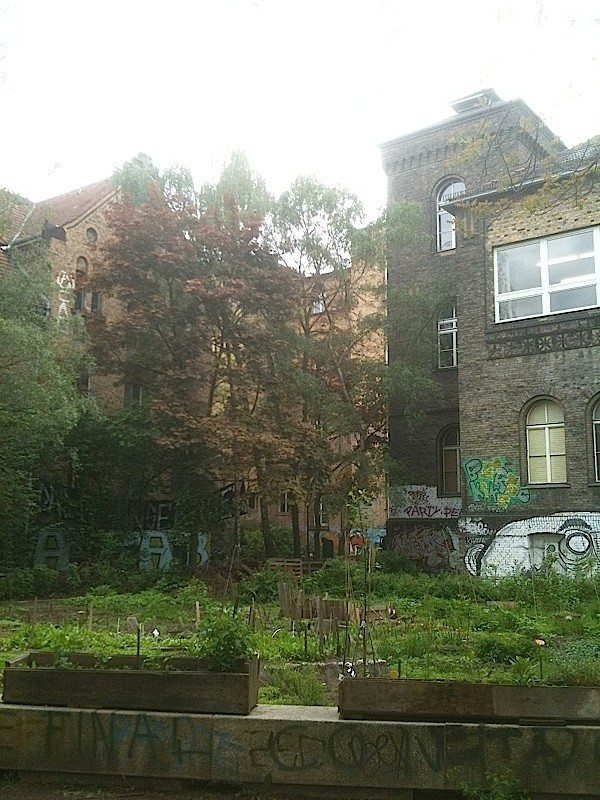 Rauch Haus, le potager, Berlin 2012